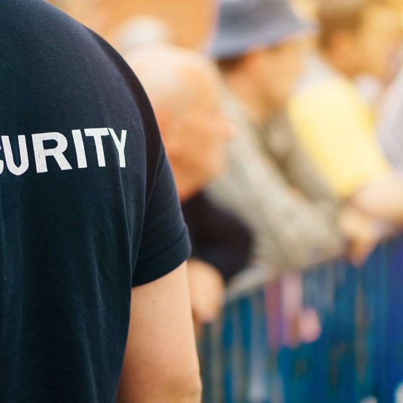 Security Sector